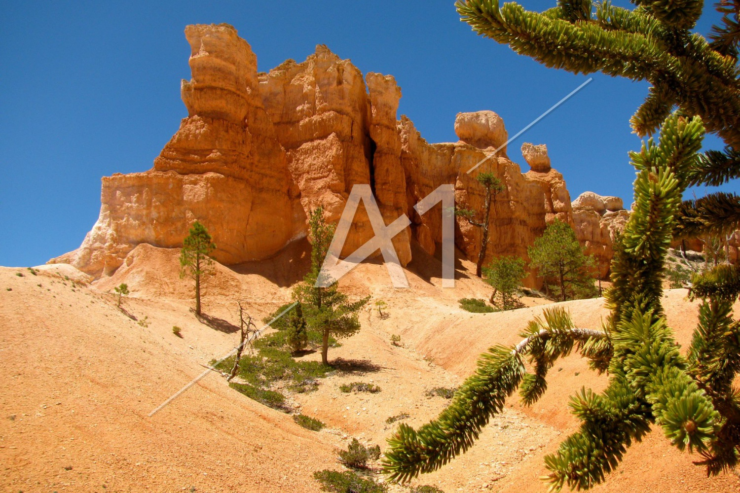 Parc national de Bryce Canyon - Utah - États Unis